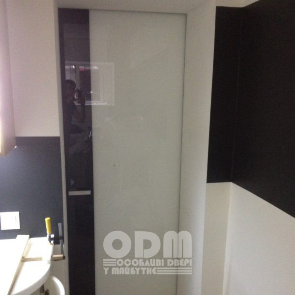 Двери ODM Стекло Standart RAL 9003